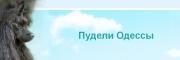 пудели Одессы